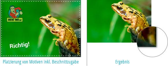 Beispiel für Bildelemente mit Bildanschnitt